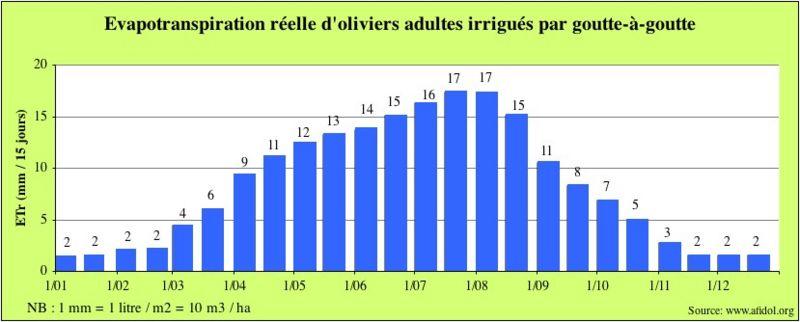 800px-Graph_ETR_olivier_en_goutte-à-goutte