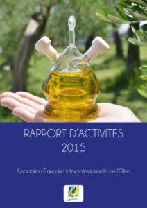 rapport-activite-2015