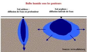 Le matériel d'irrigation - bulbe humide
